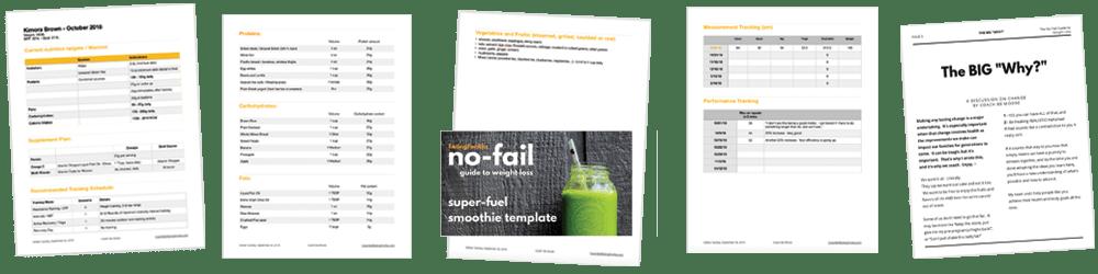 E4A Nutrition Audit