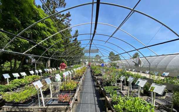 Greenhouse at Juniper Level Botanic Garden