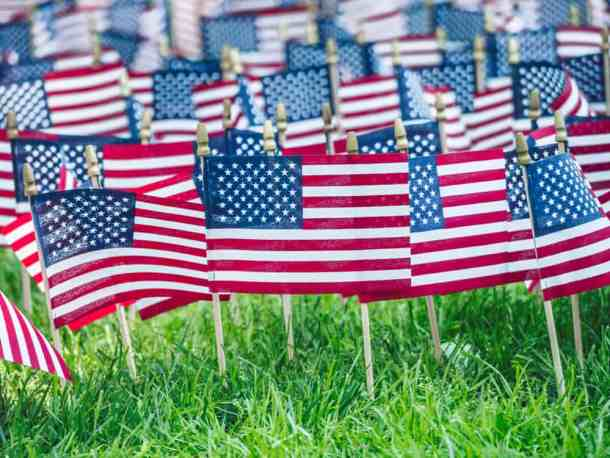 Flags in field for memorial day