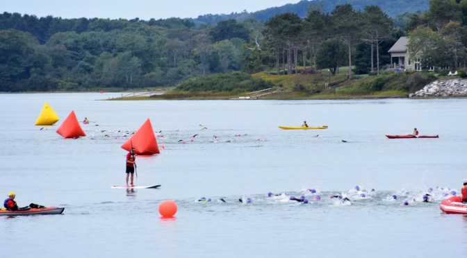 Get better at triathlon swimming