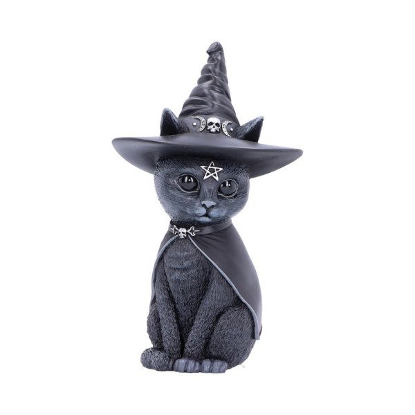 Purrah Cat Nemesis Now Witch Occult Witchcraft Familiar Spiritual Dark Spirits Figure Magic Pentagram Skull Cape Witches Hat