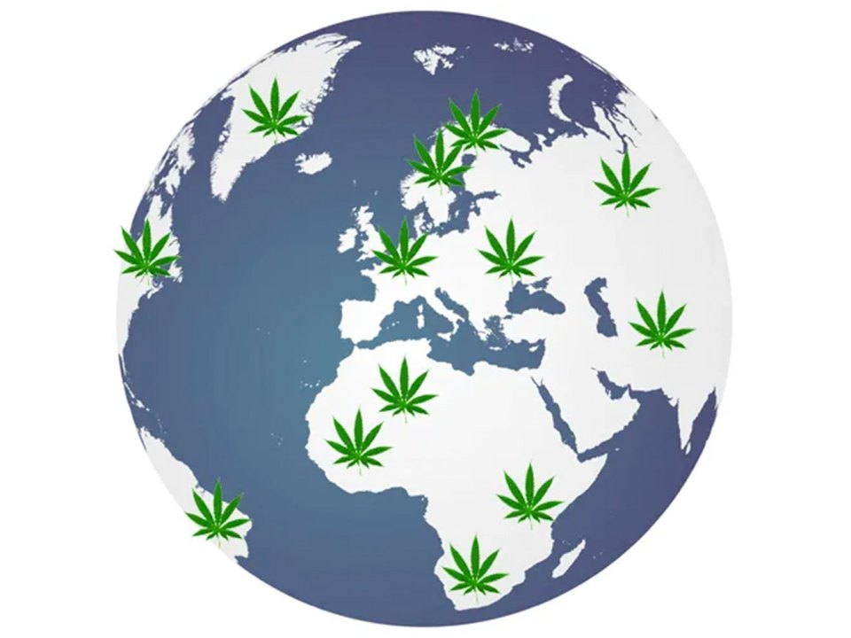 Where In The World Is Cannabis Legal?
