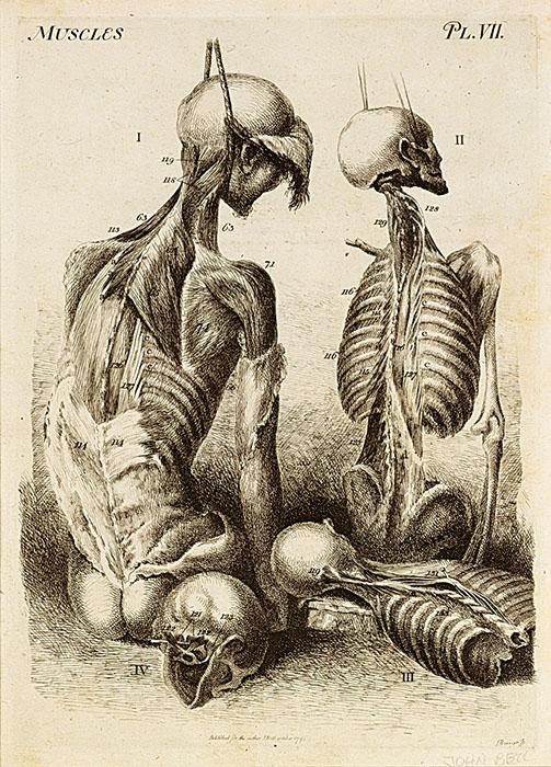 dance death blanton museum austin art
