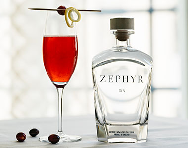 zephyr gin austin holiday gift guide shop local atx tribeza