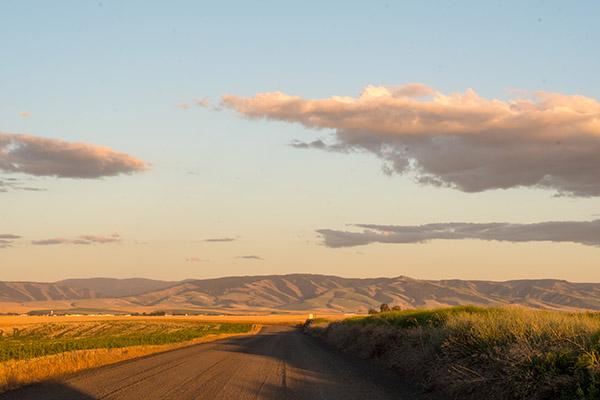 Travel Pick: Washington Wine Country