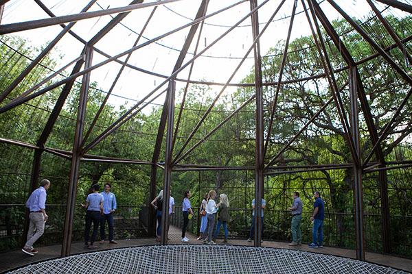 Pease Park Conservancy Magic Hour