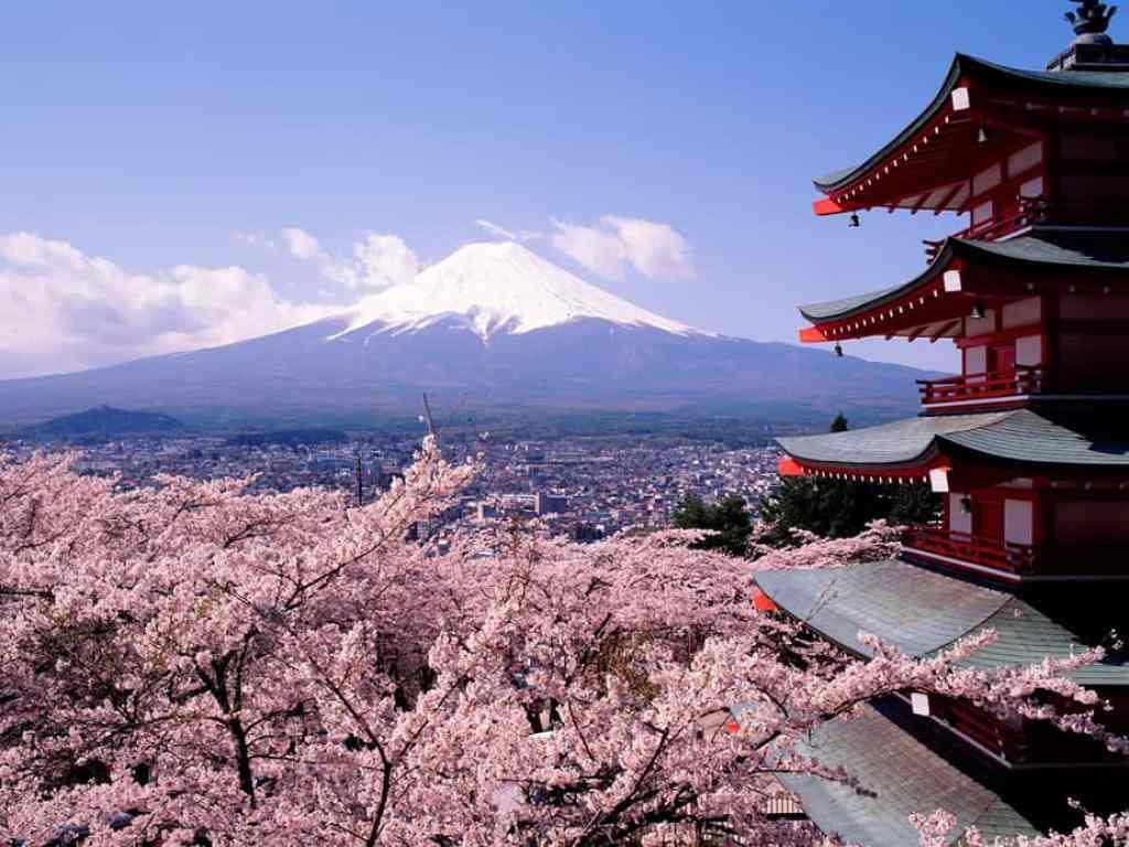 5 Dicas Para viajar na Primavera Japão