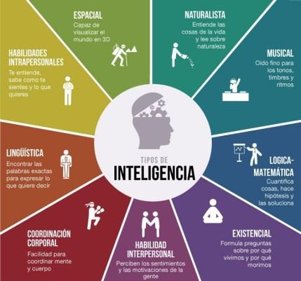 Los distintos tipos de inteligencia de Gardner.