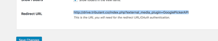 Google OAuth Redirect URL