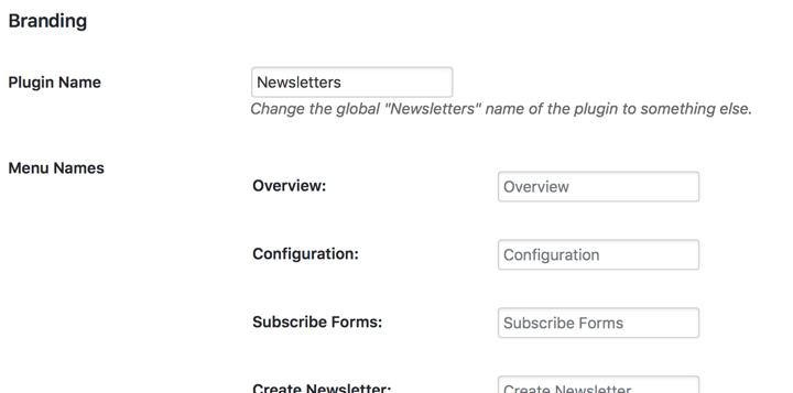 Newsletter Branding