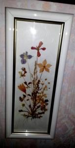 flowerpower5