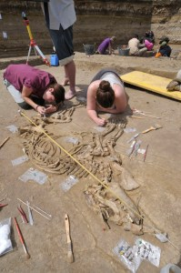 Procés d'excavació del tapir. Institut Català de Paleoecologia Humana i Evolució Social