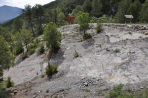 Vista del jaciment de Pinyes. Mirador del Cretaci, Coll de Nargó (Alt Urgell). Fotografia: Albert Vidal-SAP