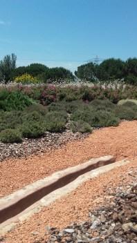 Vista de la canalització d'època romana i de la reserva de papallones. Fotografia: Araceli Martín