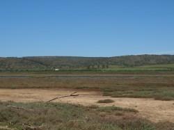 Wetland en Geelbeksvlei