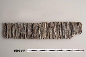 Imatge de làmina de plom epigràfic descobert en les excavacions.