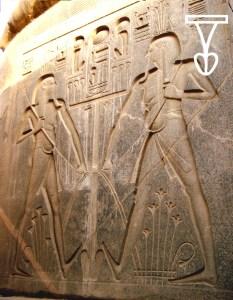 Detall de l'estàtua de Ramsés II. Temple de Luxor