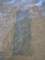 5. Procés de neteja dels líquens que cobrien els gravats. Fotografia: Josep Castells