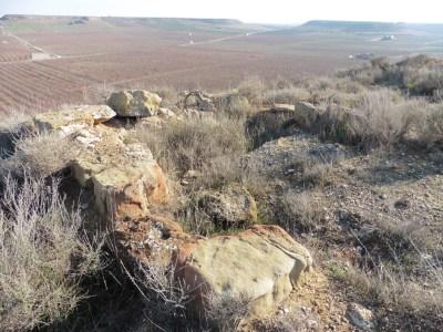 2. Detall de les estructures que es conserven en el tossal Fotografia: Servei d'Arqueologia i Paleontologia