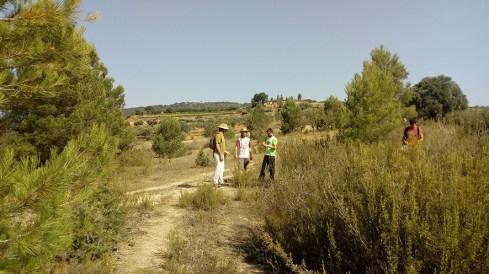 10. Vista del jaciment localitzat durant la prospecció. Fotografia: Equip Coll del Moro de Gandesa
