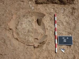 Detall d'un dels dolia, trobat al pati de la vil·la romana de Can Ring. Fotografia: GRAPE