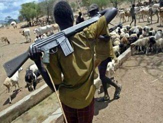 fulani-herdsmen2