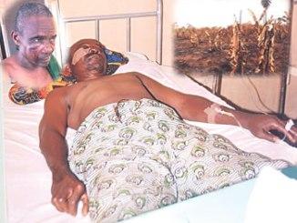 Pa Aina in hospital bed. Inset: Pa Aina's burnt plantain farm