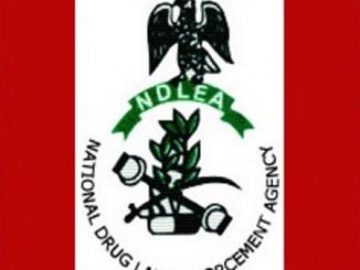 ndlea logo