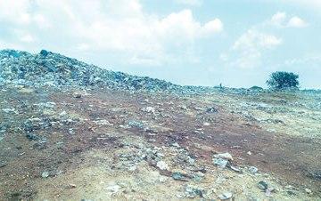 The dump site