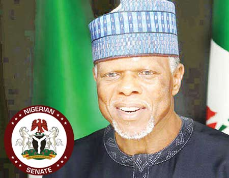 Why customs seized senate's N298m SUV