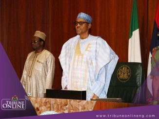 FEC - Federal Executive Council - Muhammadu Buhari