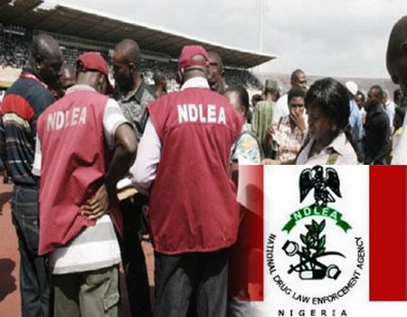 NDLEA arrests 30 drug traffickers, NDLEA raids eateries in Plateau, NDLEA warns of new ways of drug, NDLEA nabs two for selling drugged, NDLEA arrests 133, drug traffickers, NDLEA drugs, NDLEA, drug dealers, Anambra