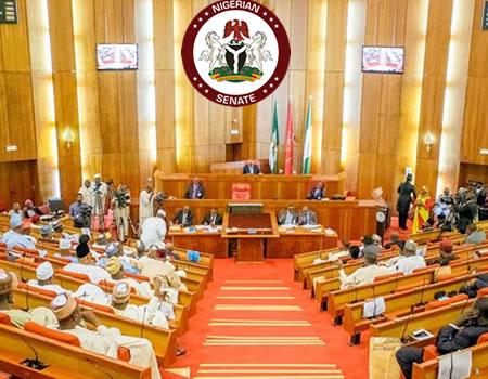 Senate indicts Ministry, Afenifere to Senate, constitutional review, senate, bill, sallah, acting Clerk of Senate