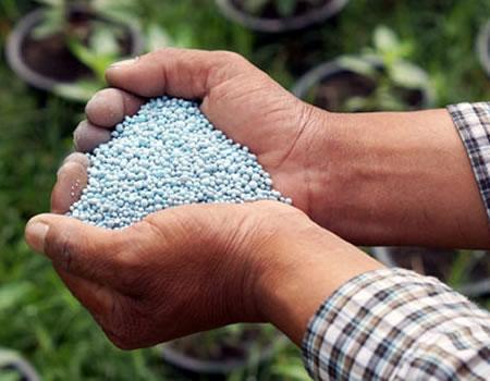 MoU to improve soil productivity