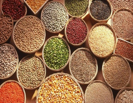 empowers agricultural export products