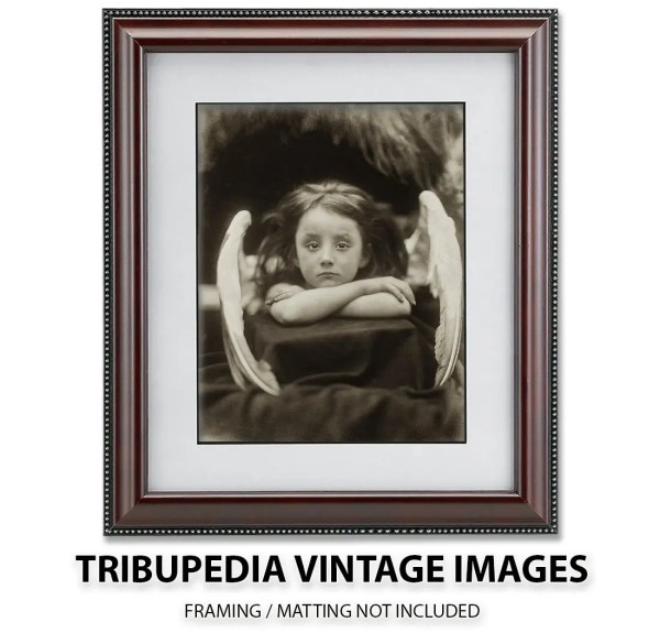 Fits Standard 8x10 Matted Frames and 8.5x11 Document Frame