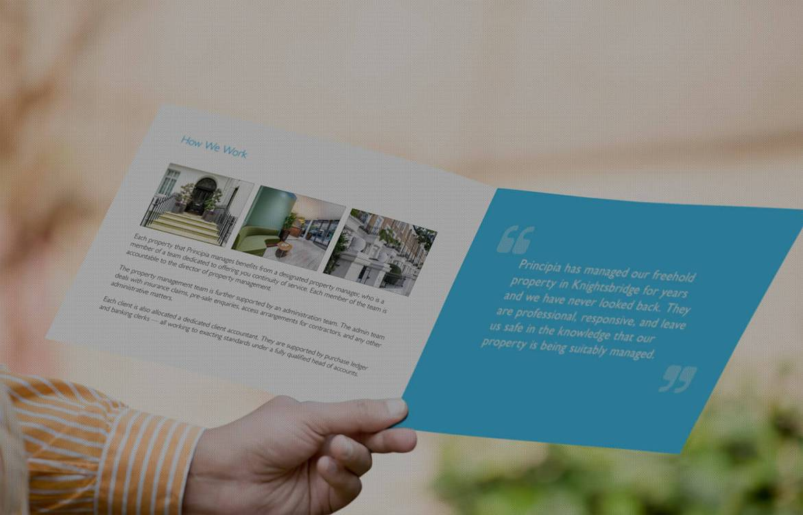 A man's hand holds up a brochure for Principia designed by Tribus — Tribus Creative: Marketing agency for small business