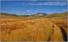 Hellroarer Trail