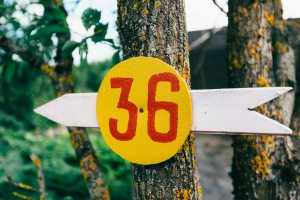 Creative signpost
