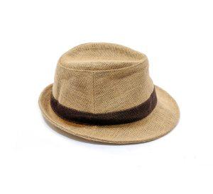 fedora hat isolated
