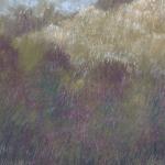 Mist on the Far Field 2 Tricia Reust