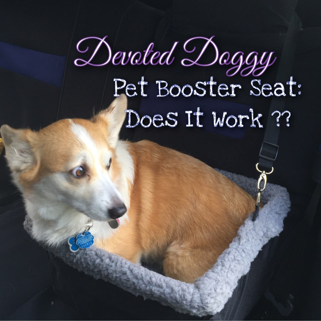 Get Your Pet Its Best View in The Car! Pet Booster Seat