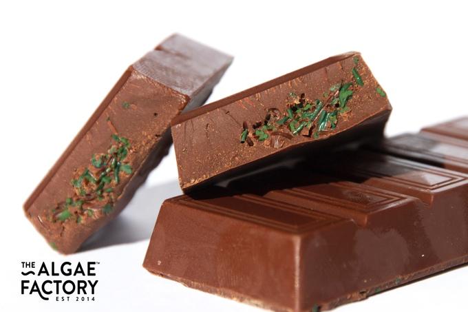Chocolate … From Algae ? Yum?!?!?