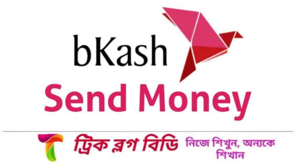 বিকাশ সেন্ড মানি (bKash send money)