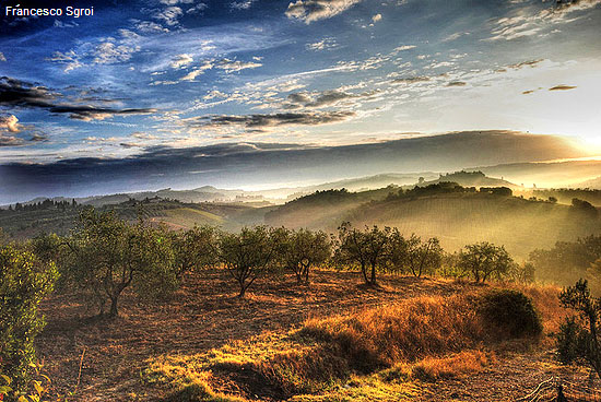 HDR Nature Photography