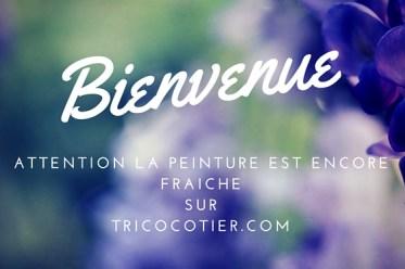 Bienvenue sur Tricocotier.com