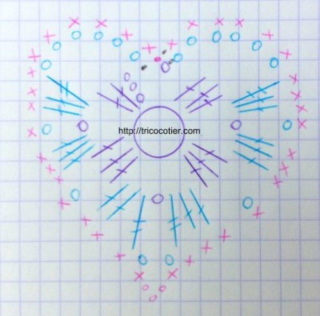 diagramme coeur