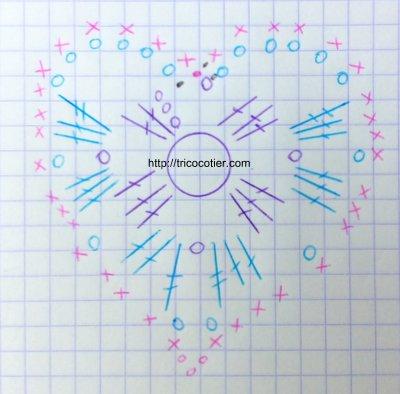 diagramme du cœur