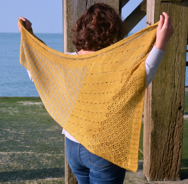 modèle de chale tricot Danio Aglaelaser