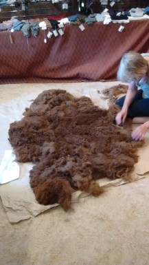 Alpaca fleece (no animal harmed!) - more on this in a later post.